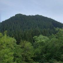 山に行きたい