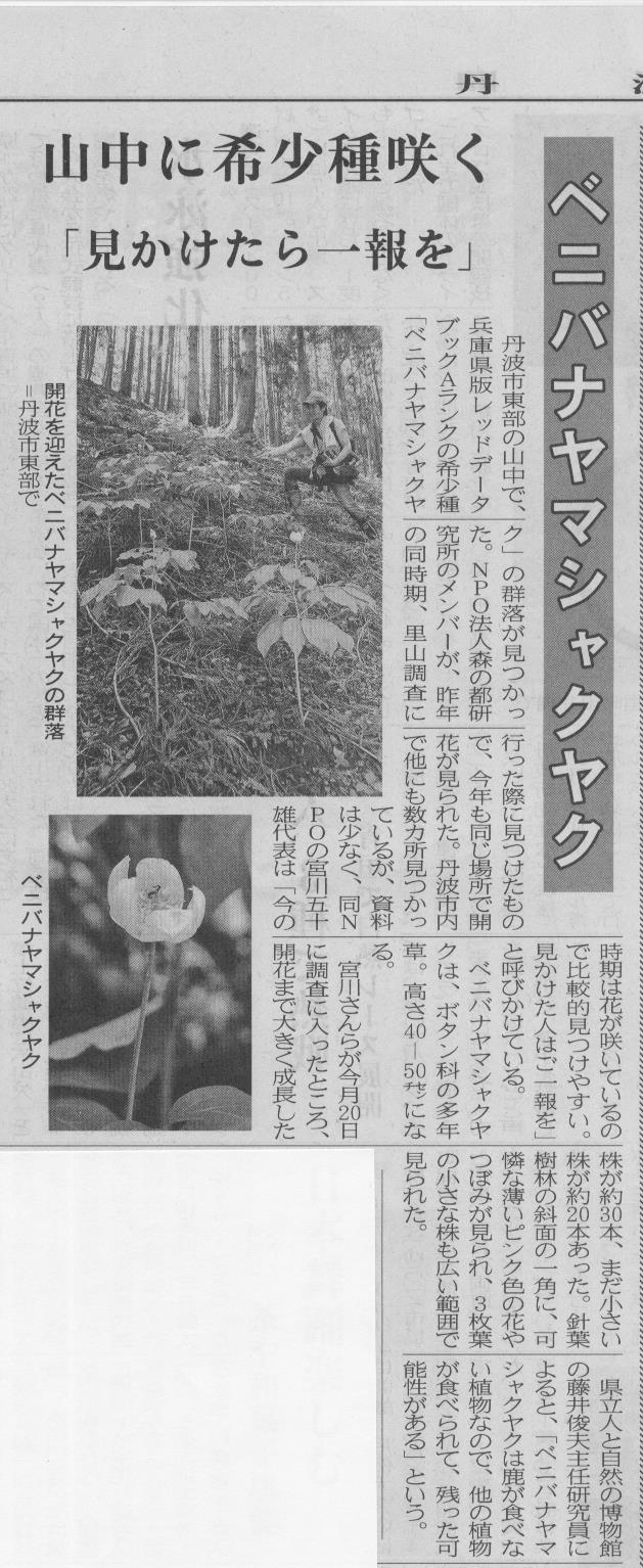 芍薬新聞記事