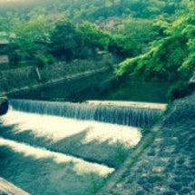 嵐山の湯葉豆腐