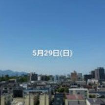 29日(日)のハイド