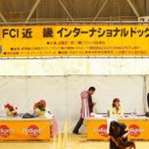 2016 FCI 近…