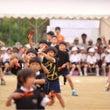 小学校運動会でした。