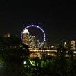 シンガポールでカジノ…