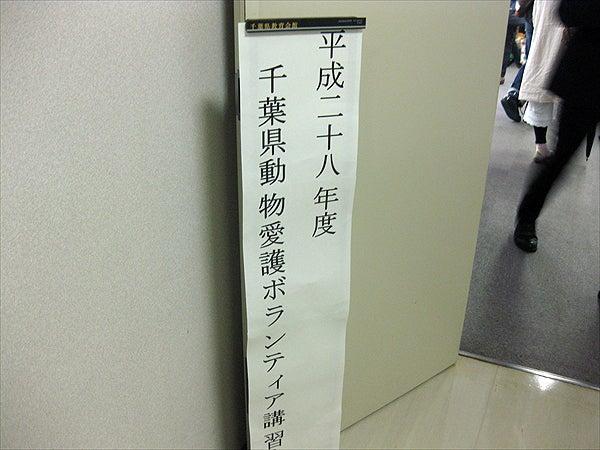 IMG_1491_R.JPG
