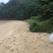 13回海岸清掃ボラン…