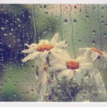 梅雨ヘアスタイル