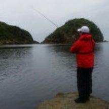 釣りはしてます。(笑…