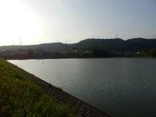 夕日がいい感じの池