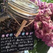 季節の珈琲〜紫陽花ブ…