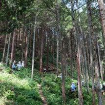 冒険の森 親子体験会…