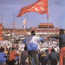 SEALDs ~なぜ…
