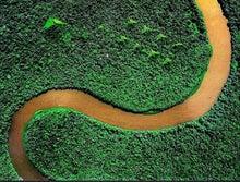 地球空洞内の緑の大地