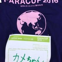 PARACUP201…