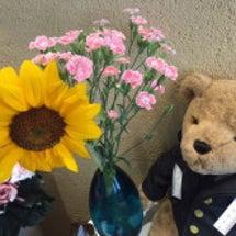 当院のお花