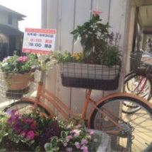 自転車型フラワースタ…