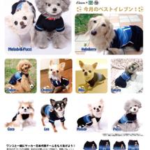 Cuun×犬の生活 …