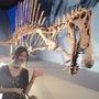 『恐竜博2016』