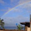 ハワイ、ダイビング2…