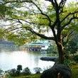 清澄庭園ヨガ★レポ!…