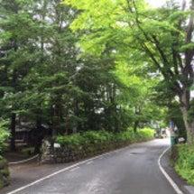 霧雨の旧軽井沢