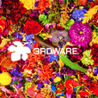 【3RDWARE】×…