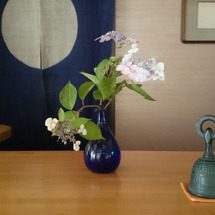 今日のお花。あちこち…