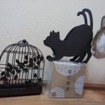 猫のアイアン蚊遣りホ…