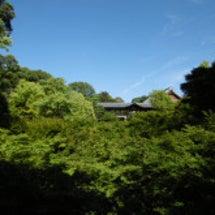 初夏の東福寺