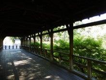 東福寺H28.6