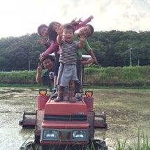 天ぷらトラクターの、…