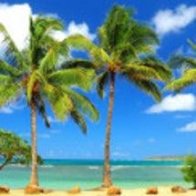 暑い日はやっぱり海行…