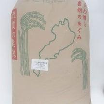 入荷 滋賀産ヒノヒカ…