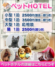 ペットホテル塩釜市