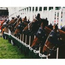 函館競馬開催。