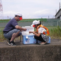 江戸川でテナガエビを…