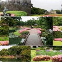 皇居東御苑の花々