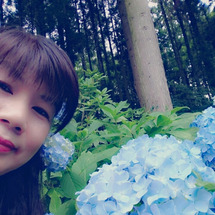 紫陽花とジェラート