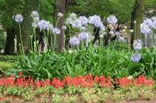 6月21日宮崎公立大学