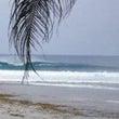 Samar Surf…