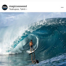 タヒチ帰国後の日の波