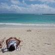 Hawaii3,4日…