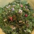 春の野草酵素ジュース…