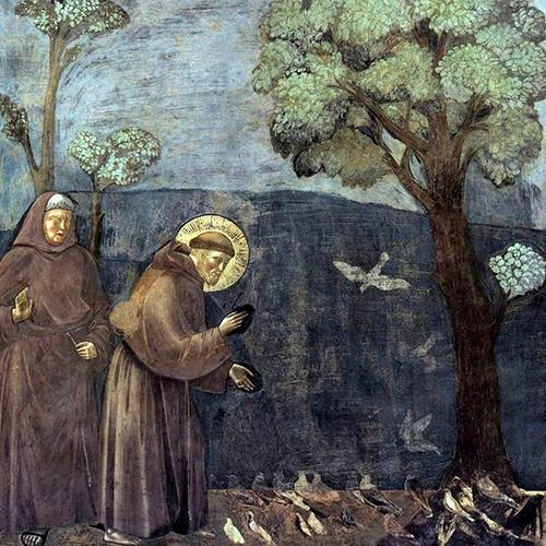 小鳥たちに教えを説くフランチェスコ