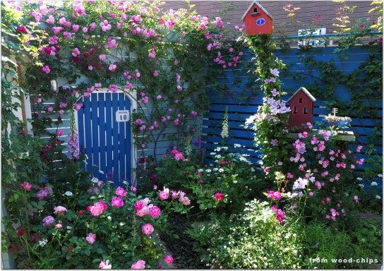 ヒルズガーデン 小鳥たちとバラの庭