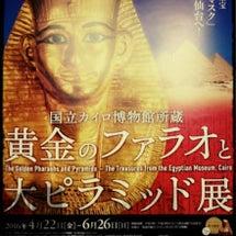 エジプト…恐るべしっ…