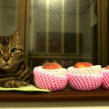 桃に興味なかったむさ…
