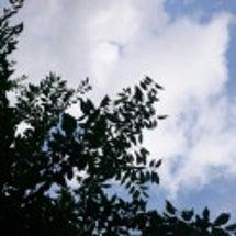 雨雲と夏日 ※追記あ…