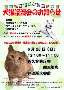 佐久犬猫譲渡会のお知らせ
