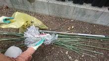 庭の掃除 清掃