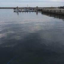 伊良湖港へタコを釣り…